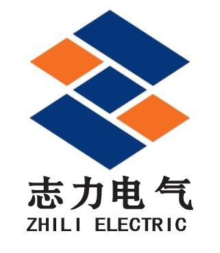 扬州志力电气科技有限公司/扬州高压测试仪