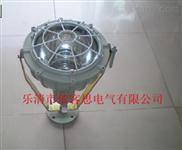 BAT51-符号新国家标准70瓦 BAT51 防爆投光灯性能稳定 畅销全国