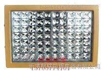 LED馬路燈防爆燈頭100W