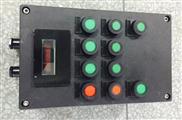 LCZ8050-A2D2G全塑防爆防腐操作柱