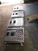 BXMD-T河北防爆配电箱空箱体供应厂家.按照尺寸定做防爆配电箱体
