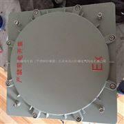 BXK51-T亿博娱乐官网下载箱子铸铝材质.尺寸300*400*200.亿博娱乐官网下载等级IICT6