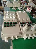 BXS-2/100A防爆电源插座箱