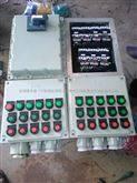 明装防爆配电箱BXD51明装防爆动力配电箱