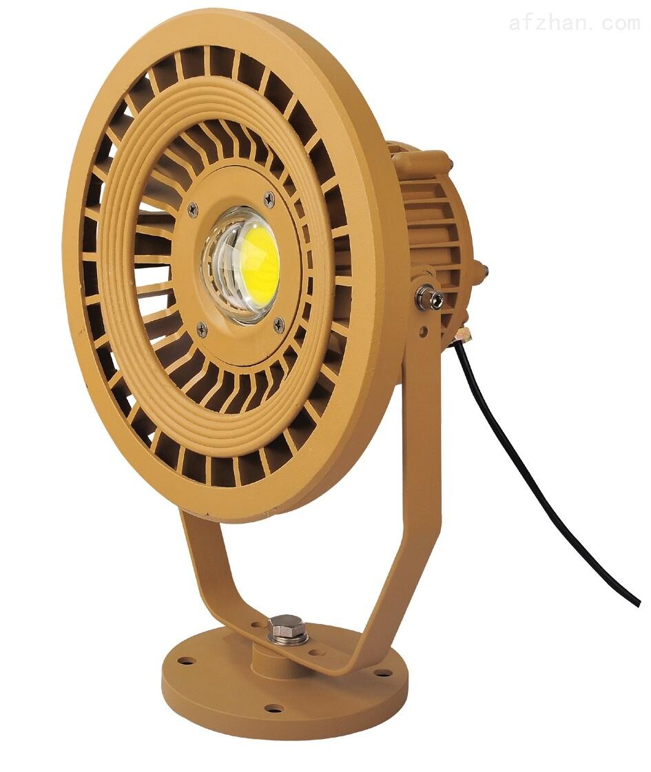 110W防爆LED投光灯