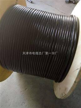 ZRN-KVVP22阻燃耐火控制电缆,铠装屏蔽线