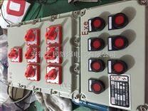 反应釜防爆箱配套专用防爆箱反应釜防爆电器箱