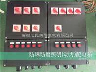 BXMD8050防爆防腐控製箱(猫咪破解版免费下载v永久vip破醫藥)