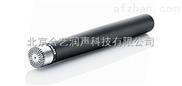 4003-DPA 4003 全指向电容话筒