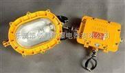 BFC8120防爆强光泛光灯(带镇流器)