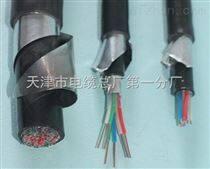 铁路信号电缆PZYH23