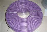 乐山西门子DP电缆代理商