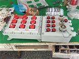 BXMD定做电磁阀防爆配电箱