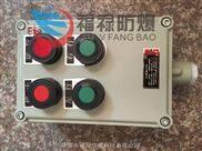 LBZ-A2D2G-LBZ-A2D2G防爆现场操作箱