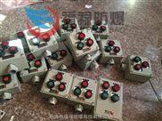 BZC-A2B1D2K4防爆操作柱