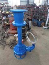 立式潜水渣浆泵/耐磨合金液下泥浆泵/高效尾砂泵