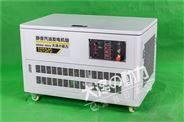 集装箱式汽油发电机