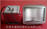 NSC9720防水防尘防眩灯、防眩方形壁灯
