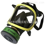 防毒面具全面罩防毒防尘全面具防毒气毒烟化工气体防护口罩