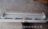 BAY81-Q2*28W防爆防腐全塑荧光灯(双管)