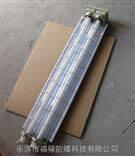 BPY2*40W隔爆型双管荧光灯