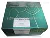 质粒DNA小量提取试剂盒 Plasmid DNA Purification Kit