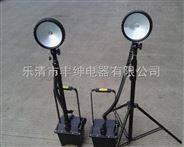 应急泛光灯 手提手推BWF5020多功能强光探照灯