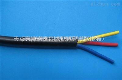 电源线RVVZ-3*16mm2  RVVZ阻燃电源线4*16