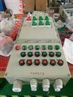 BMX51-6K100防爆照明开关箱