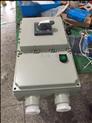 BDZ52防爆漏电开关箱