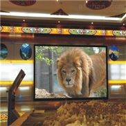酒店婚慶LED大屏幕P4高清LED電子屏