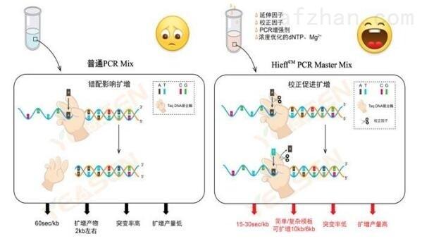 嗜水气单胞菌探针法荧光定量PCR试剂