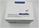 原装原装兔细胞间粘附分子-1(ICAM-1)ELISA高质量厂家