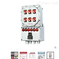 化工厂BXD51防爆配电箱