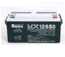 韓國友聯蓄電池MX12650