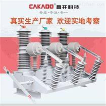 供应户外高压真空断路器普通手动型