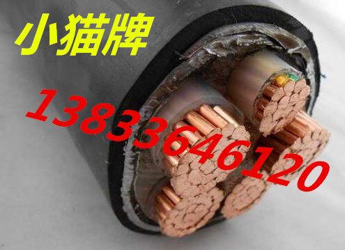 天津电缆mvv42铠装矿用电力电缆专卖