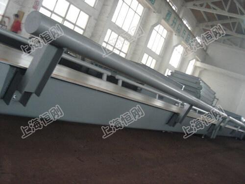 上海汽车衡