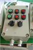 LBZ-B2D2R1防爆操作柱
